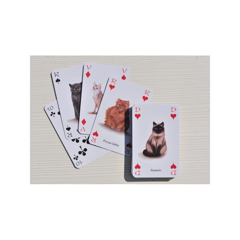 jeux de 54 cartes sur le th me des chats taille. Black Bedroom Furniture Sets. Home Design Ideas