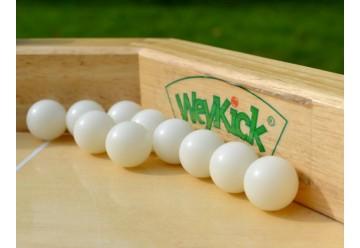 Lot de 10 ballons Weykick