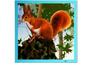 Puzzle écureuil en bois